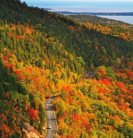 Best Places in America To See Autumn Leaves